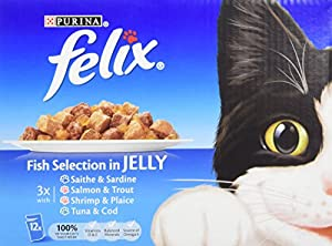 Felix Pouch CiJ Fish Selection  12 x 100 g (Pack of 4)