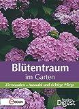 Blütentraum im Garten: Zierstauden - Auswahl und richtige Pflege (German Edition)