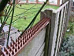 Primrose Fence and Wall Security Spik...