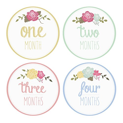 Pinkie Penguin Baby Monthly Stickers - Flowers, Leaves and Beauty - Milestone Onesie Stickers - 1-12 Months - Baby Girl