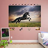 Fathead Stormy Skies Horse Real Big Mural Wall Decor