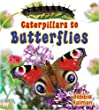 Caterpillars to Butterflies (It's Fun to Learn about Baby Animals)
