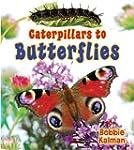 Caterpillars to Butterflies (It's Fun...