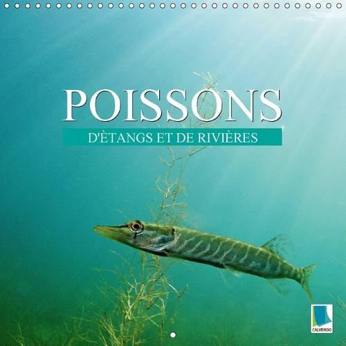 Poissons : D'etangs et de Rivieres: Prises de Vues Sous-Marines Grandioses de Poissons Qui Evoluent dans Nos Eaux (Calvendo Animaux) (French Edition) PDF