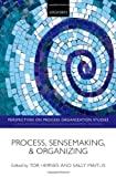 img - for Process, Sensemaking, and Organizing (Perspectives on Process Organization Studies) book / textbook / text book