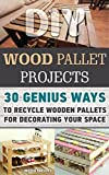 DIY Wood Pallet Projects: 30+ Genius Ways To Recycle Wooden Pallets For Decorating Your Space: (DIY Household Hacks, DIY Projects, DIY Crafts,Wood Pallet ... DIY Projects, and More DIY Tips Book 1)
