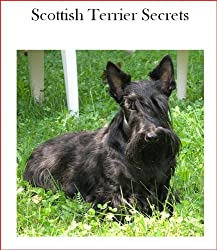 Scottish Terrier Secrets- How to Raise Happy and Healthy Scottish Terriers