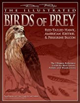Free The Illustrated Birds of Prey: Red-Tailed Hawk, American Kestrel & Peregrine Falcon: The Ultimate Re Ebooks & PDF Download