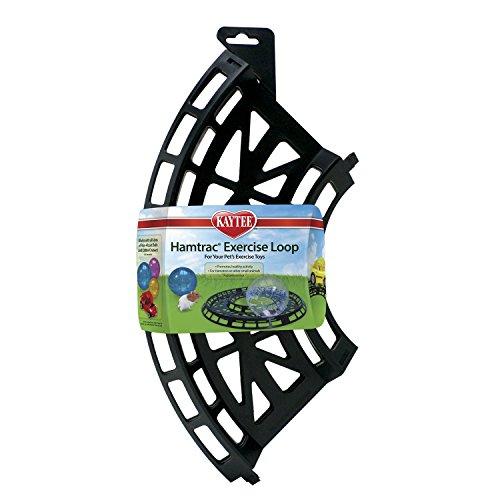 Kaytee Hamtrac Exercise Loop 516icrtbIyL