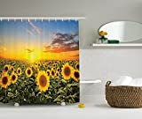 Ambesonne Country Farm Garden Decorations Collection, Sunset over Colorful Sunflower Plants Field at Cloudy Evening, Polyester Fabric Bathroom Shower Curtain Set with Hooks, Blue Brown Yellow Green
