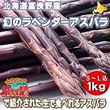 北海道富良野産 稀少!紫のアスパラ ラベンダーアスパラ 1kg
