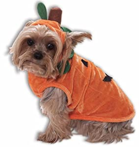 Pumpkin Pet Costume - Small