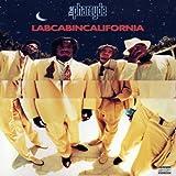 Labcabincalifornia (Vinyl)