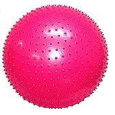 ドッグスブラザース(DOGS BROS) ボディマッサージボール 65cm ピンク #2639