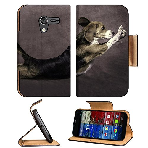 Animals Cute Dogs Jumping Play Motorola Moto X Flip Case Stand Magnetic Cover Open Ports Customized Made To Order Support Ready Premium Deluxe Pu Leather 5 7/16 Inch (138Mm) X 3 1/16 Inch (78Mm) X 9/16 Inch (14Mm) Msd Mobility Cover Professional Motox Cas front-1054768