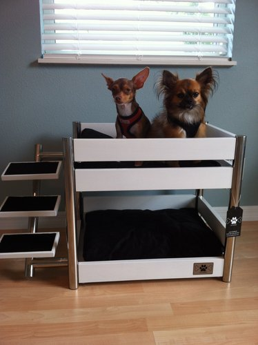 Lazybonezz Metropolitan Pet Bunk Bed Ebony