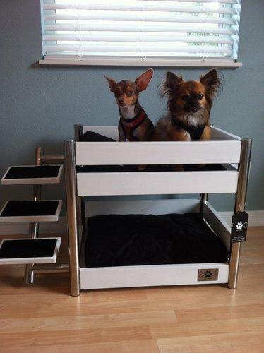 Amazon Com Lazybonezz Metropolitan Pet Bunk Bed Ebony