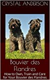 Bouvier des Flandres: How to Own, Train and Care for Your Bouvier des Flandres