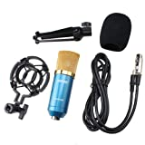AGPtek Blue Condenser Sound Studio Recording Microphone Mic Dynamic ? Mount New
