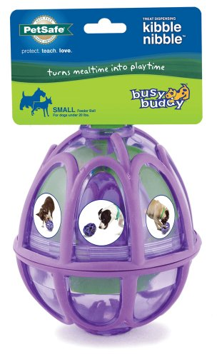 PetSafe Premier Pet Products Busy Buddy Kibble Nibble Feeder Dog Ball, Small