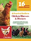 img - for A Practical Guide to Chicken Illnesses & Diseases book / textbook / text book