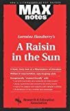 img - for Lorraine Hansberry's Raisin in the Sun (MaxNotes) by Maxine Morrin (1995-06-01) book / textbook / text book