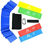 Fit Icon Resistance Exercise Band