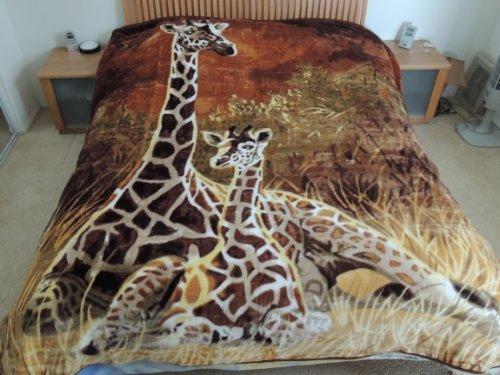 Giraffes Mom & Son, Mink Style Queen Size Soft & Warm Blanket front-1002205