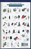 Mac's Field Guide to Acadia National Park (0898866715) by MacGowan, Craig