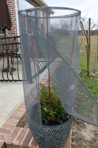 Tomato Screen Plant Protector (Tomato Netting compare prices)