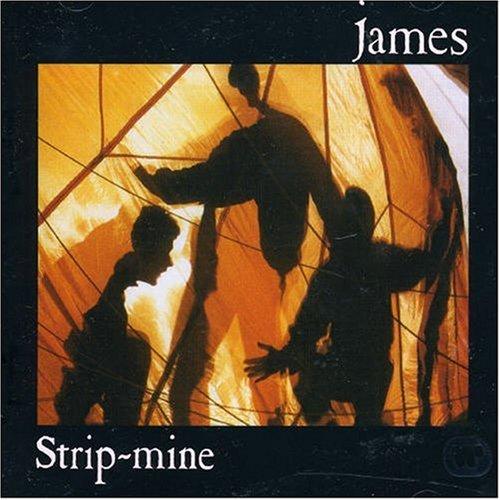 James - Strip-mine - Zortam Music