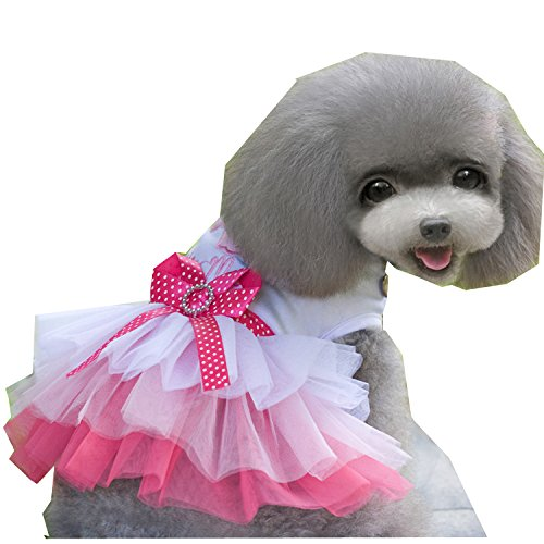 Fashion-Super-Cute-Candy-Gauze-Skirt-for-Girls-Pets-Chihuahua-Pomeranian-Shih-Tzu-Maltese-dog-Yorkshire-Terrier