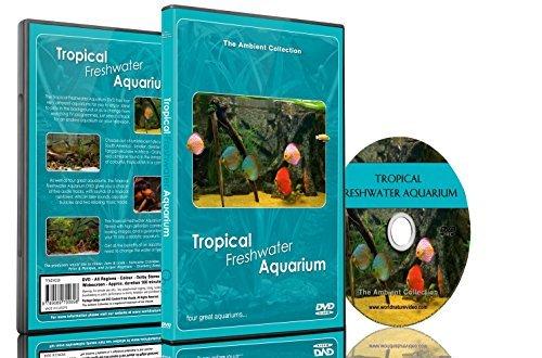 水族館 DVD -  熱帯淡水魚水族館 - 音楽と自然音のHD水槽の100分