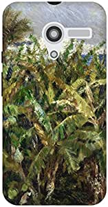 The Racoon Grip printed designer hard back mobile phone case cover for Moto X (1st Gen). (Field of B)