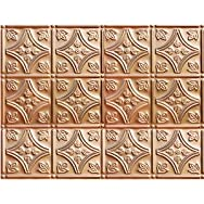 Shanker Industries CO209 2 Tru-METAL Nonsuspended Ceiling Tile & Backsplash Tile Pack of 5