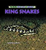 img - for King Snakes (The Really Wild Life of Snakes) book / textbook / text book