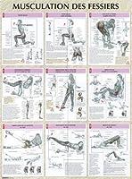 Musculation des fessiers : Poster