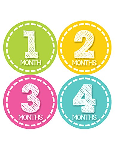 Months in Motion 373 Monthly Baby Stickers Milestone Age Sticker Photo Prop