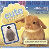 Cute Overload Page-A-Day Calendar 2009 (Color Page-A-Day(r) Calendars) ~ Meg Frost