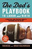 img - for Dad's Playbook to Labor & Birth: A Practical and Strategic Guide to Preparing for the Big Day by Theresa Halvorsen (2012-06-05) book / textbook / text book