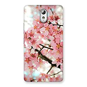 Impressive Cherry Blossoms Multicolor Back Case Cover for Lenovo Vibe P1M