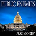 Public Enemies Audiobook by Jess Money Narrated by Dan Woren
