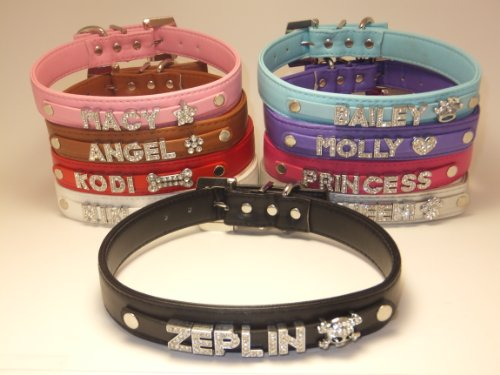 Personalized Custom Fashion Leather Classic Dog