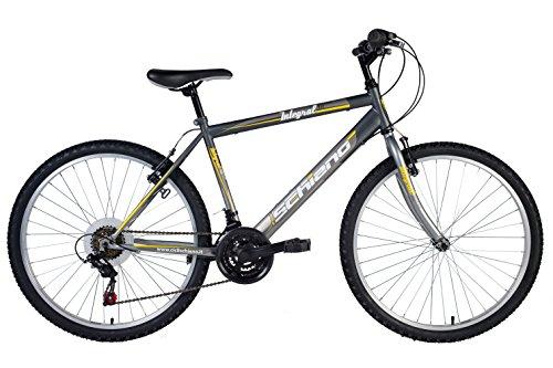 flli-schiano-integral-cambio-power-18v-bicicletta-antracite-grigio-24