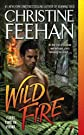 The Leopard Series: Wild Rain, Burning Wild, Wild Fire
