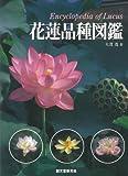 【ハ゛ーケ゛ンフ゛ック】  花蓮品種図鑑
