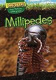 Millipedes (Dig Deep! Bugs That Live Underground)