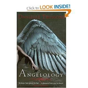 Panorama No.2: The Study of Angelology (Panorama Bible ...
