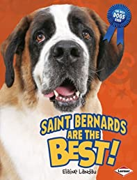 Saint Bernards Are the Best! (Best Dogs Ever)
