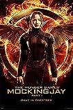 The Hunger Games Mockingjay Part 1 Maxi Poster 91.5cm x 61cm
